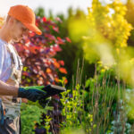 Make Sure That Your Lawn and Garden Company Are Christians